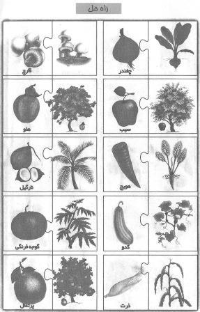 پازل میوه